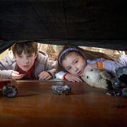 Chris O'Neil - galeria zdjęć - filmweb