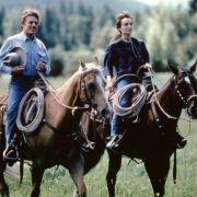 Kristin Scott Thomas - galeria zdjęć - Zdjęcie nr. 11 z filmu: Zaklinacz koni