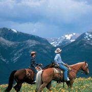 Kristin Scott Thomas - galeria zdjęć - Zdjęcie nr. 5 z filmu: Zaklinacz koni