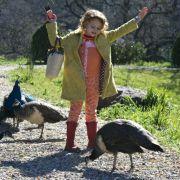Maggie Elizabeth Jones - galeria zdjęć - Zdjęcie nr. 1 z filmu: Kupiliśmy zoo