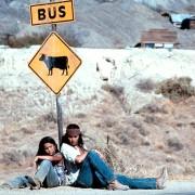 Johnny Depp - galeria zdjęć - Zdjęcie nr. 13 z filmu: Odważny