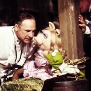 Mel Brooks - galeria zdjęć - Zdjęcie nr. 1 z filmu: Wielka wyprawa muppetów