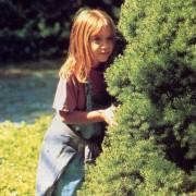 Mary-Kate Olsen - galeria zdjęć - Zdjęcie nr. 8 z filmu: Czy to ty, czy to ja