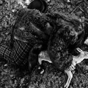 Johnny Depp - galeria zdjęć - Zdjęcie nr. 6 z filmu: Truposz