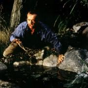 Jack Nicholson - galeria zdjęć - Zdjęcie nr. 10 z filmu: Wilk