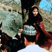 Ayoub Ahmadi - galeria zdjęć - filmweb