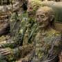 The Walking Dead: Nowy Świat - galeria zdjęć