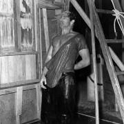 Marlon Brando - galeria zdjęć - Zdjęcie nr. 24 z filmu: Tramwaj zwany pożądaniem