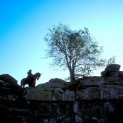 Ralph Fiennes - galeria zdjęć - Zdjęcie nr. 18 z filmu: Wichrowe wzgórza