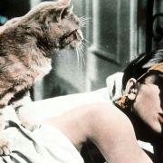 Audrey Hepburn - galeria zdjęć - Zdjęcie nr. 6 z filmu: Śniadanie u Tiffany'ego