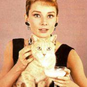 Audrey Hepburn - galeria zdjęć - Zdjęcie nr. 24 z filmu: Śniadanie u Tiffany'ego
