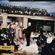 Alfred Hitchcock - galeria zdjęć - Zdjęcie nr. 2 z filmu: Ptaki