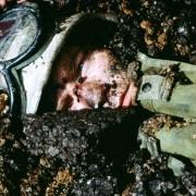 Ewan McGregor - galeria zdjęć - Zdjęcie nr. 4 z filmu: Helikopter w ogniu