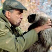 Robert De Niro - galeria zdjęć - Zdjęcie nr. 3 z filmu: Poznaj mojego tatę