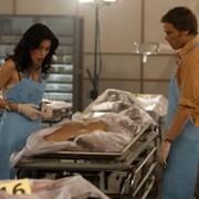 Michael C. Hall - galeria zdjęć - Zdjęcie nr. 112 z filmu: Dexter