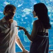 Michael C. Hall - galeria zdjęć - Zdjęcie nr. 122 z filmu: Dexter