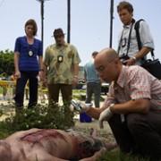 Michael C. Hall - galeria zdjęć - Zdjęcie nr. 282 z filmu: Dexter