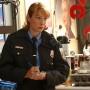 Detektyw Nancy Parras - Elizabeth Marvel