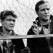 Marlon Brando - galeria zdjęć - Zdjęcie nr. 17 z filmu: Na nabrzeżach