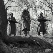 Alexander Fehling - galeria zdjęć - filmweb