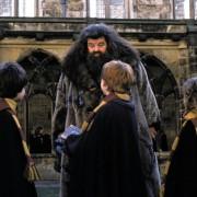 Rupert Grint - galeria zdjęć - Zdjęcie nr. 6 z filmu: Harry Potter i Komnata Tajemnic
