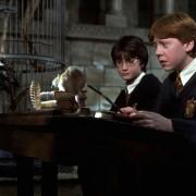 Rupert Grint - galeria zdjęć - Zdjęcie nr. 9 z filmu: Harry Potter i Komnata Tajemnic
