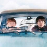 Rupert Grint - galeria zdjęć - Zdjęcie nr. 10 z filmu: Harry Potter i Komnata Tajemnic