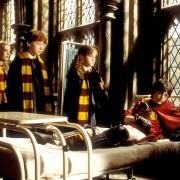 Rupert Grint - galeria zdjęć - Zdjęcie nr. 15 z filmu: Harry Potter i Komnata Tajemnic