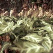 Rupert Grint - galeria zdjęć - Zdjęcie nr. 19 z filmu: Harry Potter i Komnata Tajemnic