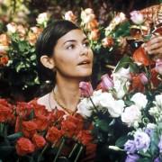 Audrey Tautou - galeria zdjęć - Zdjęcie nr. 7 z filmu: Kocha... Nie kocha!