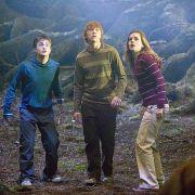 Rupert Grint - galeria zdjęć - Zdjęcie nr. 2 z filmu: Harry Potter i Zakon Feniksa
