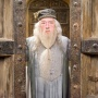 Profesor Albus Dumbledore - Michael Gambon