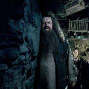 Rupert Grint - galeria zdjęć - Zdjęcie nr. 10 z filmu: Harry Potter i Zakon Feniksa