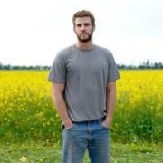 Liam Hemsworth - galeria zdjęć - Zdjęcie nr. 3 z filmu: Miasteczko Cut Bank