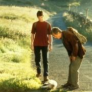 Christian Bale - galeria zdjęć - Zdjęcie nr. 9 z filmu: Wszystkie małe zwierzątka