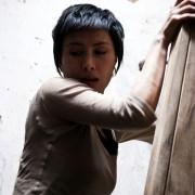 Josie Ho - galeria zdjęć - filmweb