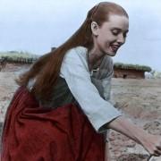Audrey Hepburn - galeria zdjęć - Zdjęcie nr. 8 z filmu: Nie do przebaczenia