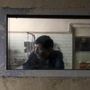 Marcello Fonte - galeria zdjęć - Zdjęcie nr. 9 z filmu: Dogman