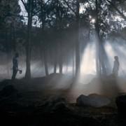 Abubakar Salim - galeria zdjęć - Zdjęcie nr. 22 z filmu: Wychowane przez wilki