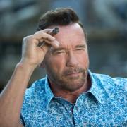 Arnold Schwarzenegger - galeria zdjęć - filmweb