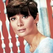 Audrey Hepburn - galeria zdjęć - Zdjęcie nr. 19 z filmu: Doczekać zmroku