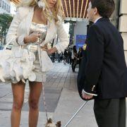 Bradley Steven Perry - galeria zdjęć - filmweb