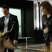 Melina Kanakaredes - galeria zdjęć - Zdjęcie nr. 8 z filmu: CSI: Kryminalne zagadki Nowego Jorku