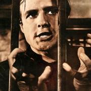 Marlon Brando - galeria zdjęć - Zdjęcie nr. 20 z filmu: Dwa oblicza zemsty