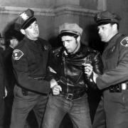Marlon Brando - galeria zdjęć - Zdjęcie nr. 8 z filmu: Dziki