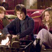 Rupert Grint - galeria zdjęć - Zdjęcie nr. 8 z filmu: Harry Potter i Czara Ognia