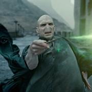 Ralph Fiennes - galeria zdjęć - Zdjęcie nr. 6 z filmu: Harry Potter i Insygnia Śmierci: Część II