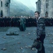 Ralph Fiennes - galeria zdjęć - Zdjęcie nr. 8 z filmu: Harry Potter i Insygnia Śmierci: Część II