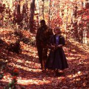 Julianne Moore - galeria zdjęć - Zdjęcie nr. 2 z filmu: Daleko od nieba