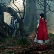 Johnny Depp - galeria zdjęć - Zdjęcie nr. 1 z filmu: Tajemnice lasu